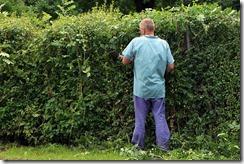 landscape-gardener-409148_640