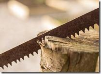 Sägeband Brennholz